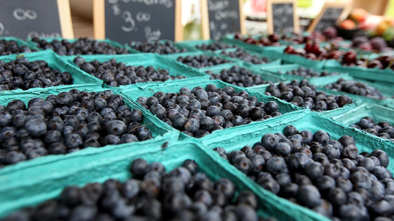 mc-pictures-bethlehem-blueberry-festival-20150-007