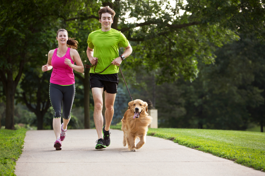 best dog parks in mont county